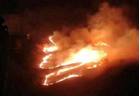 应急管理部紧急部署应对甘孜森林火灾